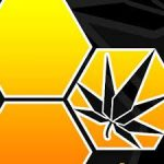 Shop Health at Honey Gold Botanicals